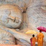 vacaciones en sri lanka anglo indiago travels
