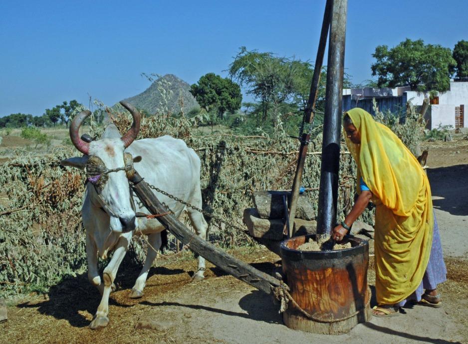 Viaje Rural India Anglo Indiago Travels